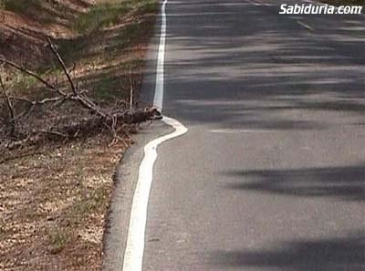 Línea Carretera Mediocridad