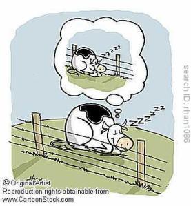 Vaca Soñando: Grama Más Verde