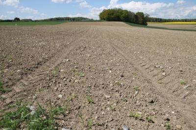 Plow the field