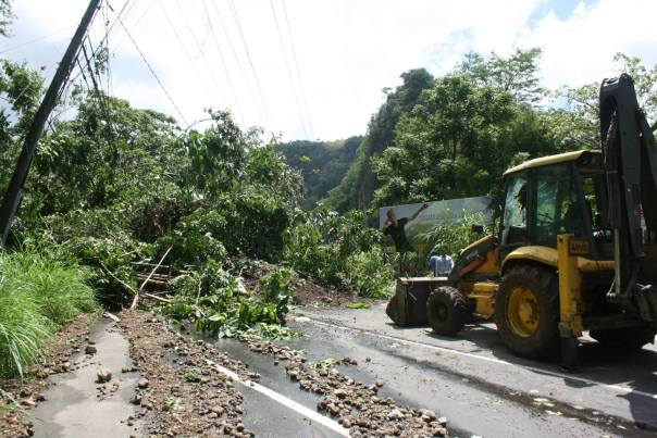 Dominica3