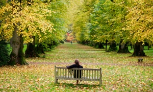 Woman sitting alone on a bench