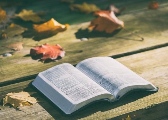 bible-1868070_960_720.jpg
