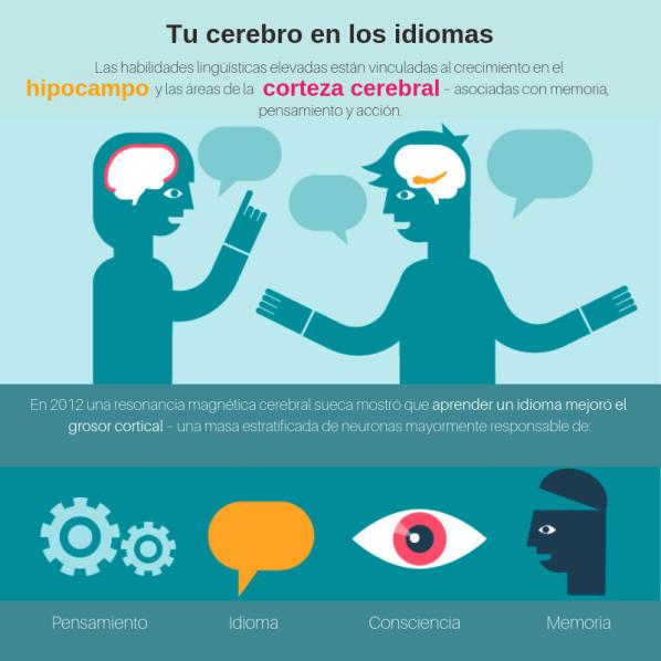 learning lenguage -2.png